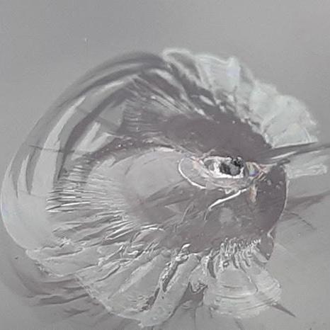 Oprava čelného skla - trieštiva